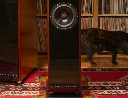 Introducing DeVore Fidelity's gibbon Super Nine Speakers